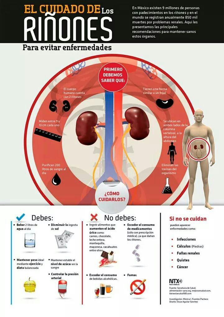 El cuidado de los riñones para evitar enfermedades